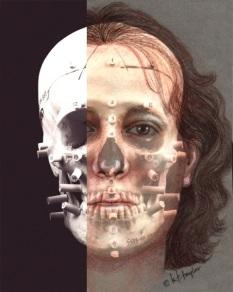 icon image for Karen T. Taylor's Advanced 2-Dimensional Identification Techniques Workshop