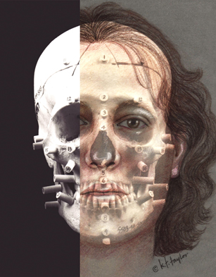 image of 2d facial reconstruction by Karen T. Taylor.