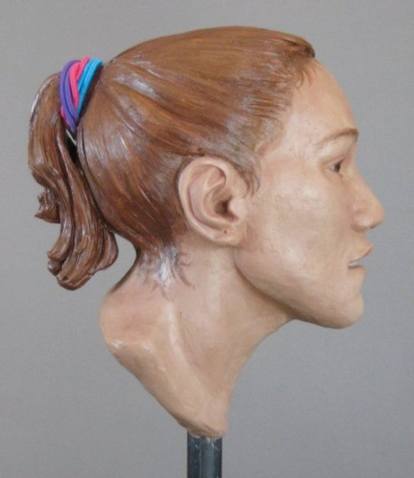 image of facial reconstruction sculpture (lateral view) done by karen t. taylor for the Chicago Jane Doe case