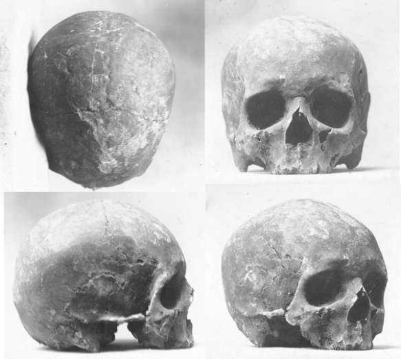 historical skull of julien dubuque