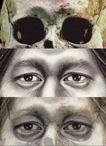 detail of historical reconstruction done by forensic artist karen t. taylor depicting the eyes